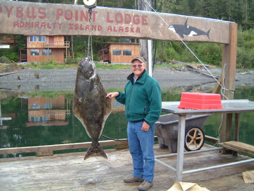 Here's Dan with another halibut in the 70 pound range. These are great eaters.