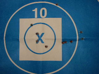 "Charles Bailey's 4.896"" 10-shot group!"