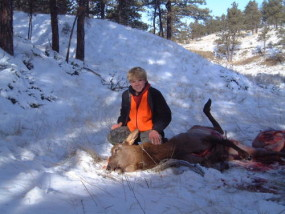 Travis with his second elk, a nice fat cow he shot with the .243 through the lungs at 220 yards. It was cold this morning, in the single digits. The ivories on this cow were worn down more than any we've seen before.